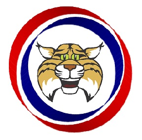 wallin-wildcat-logo